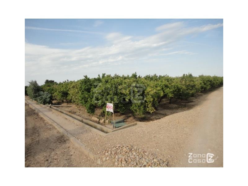 Country Property for Sale in Albalat de la Ribera