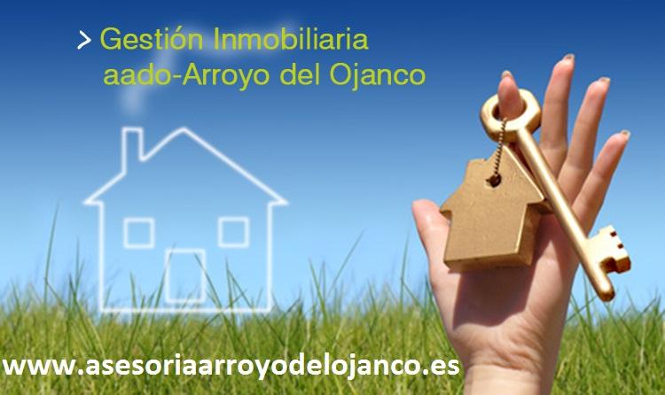 GESTION INMOBILIARIA ASESORES ARROYO DEL OJANCO